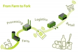 Diffuse Traceability Across Food Industry